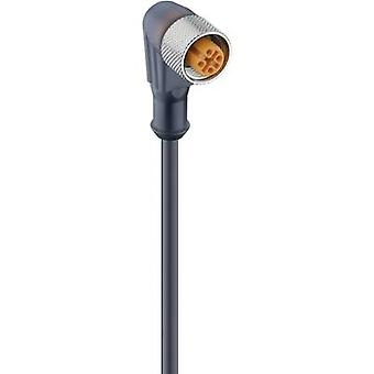 Lumberg Automation 11442 RKWT 4-225/5 M Actuator-Sensor-Connection Line M2-Plug-in BUSH STRAIGHT Black