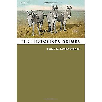 L'Animal historique