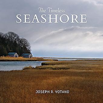 Den tidløse kysten af Joe Votano - 9780764354885 bog