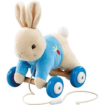 Rainbow Designs Peter Rabbit Plush/Wood Pull Along Toy