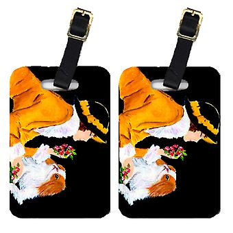Carolines Treasures  SS8540BT Lady with her Japanese Chin Luggage Tags Pair of 2