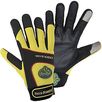 FerdyF. 1912 Size (gloves): 10, XL