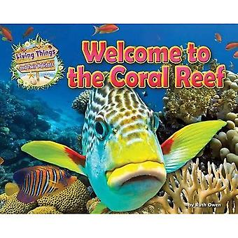 Welcome to the Coral Reef (Living Things and Their Habitats)