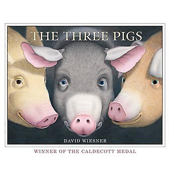 De tre grisar av David Wiesner-9781849394055 bok