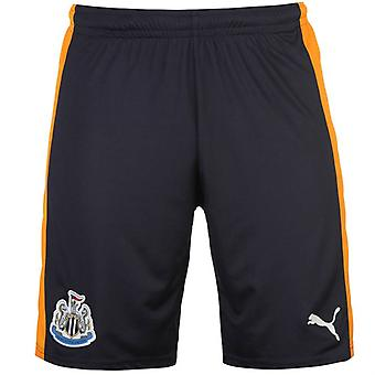 2016-2017 Newcastle Away Shorts de Football (marine)