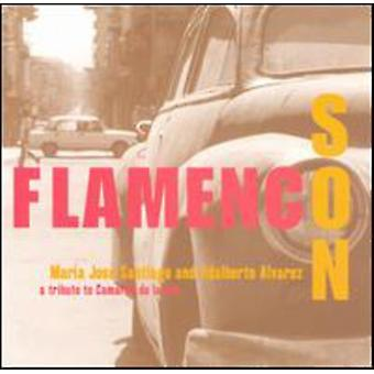 Santiago/Alvarez - Flamenco søn [CD] USA import