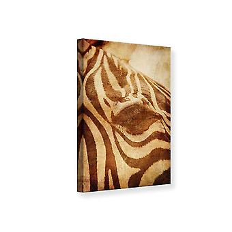 Leinwand drucken Zebra hautnah