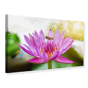 Canvas Print Lotus With Bee