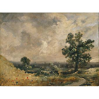 West End Fields,Hampstead,noon,John Constable,50x40cm