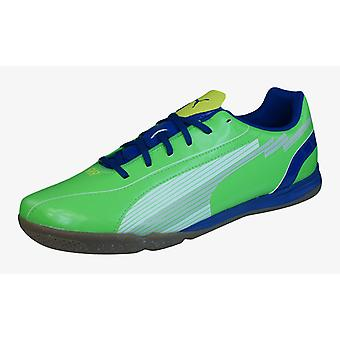 PUMA EvoSPEED 5 IT-Herren-Fußball-Trainer / Stiefel - Green