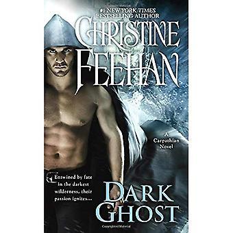 Dark Ghost (Carpathian Novels)
