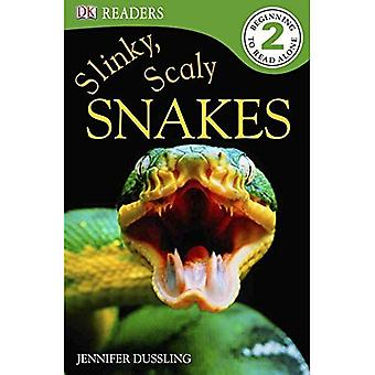 Slinky, Scaly Snakes! (DK Readers: Level 2