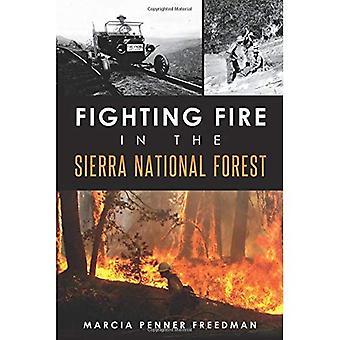 Brandbekämpningstekniker i the Sierra National Forest