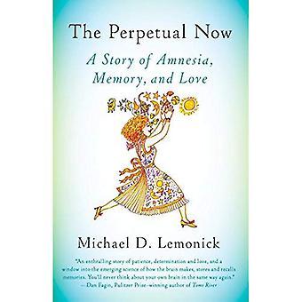 Den eviga nu: En historia av amnesi, minne och kärlek