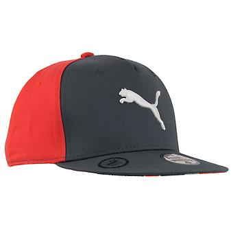 Puma Cap Tween Graphic Flatbrim