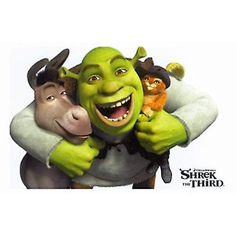 Shrek the Third Movie Poster (17 x 11)