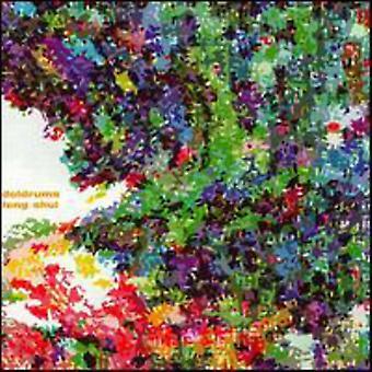 Dødvandet - Feng Shui [CD] USA importerer