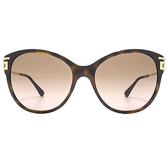 Versace Greca Strass Cateye Sunglasses In Havana