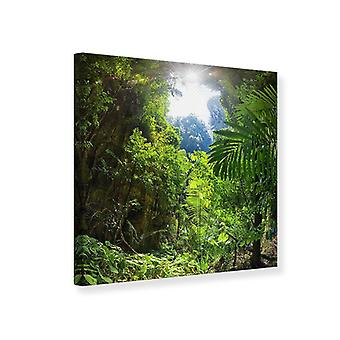 Canvas Print Clearing In The Jungle