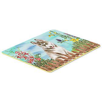 Siberian Husky grå våren kök eller badrumsmatta 20 x 30