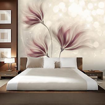 Wallpaper - Luminous Morning