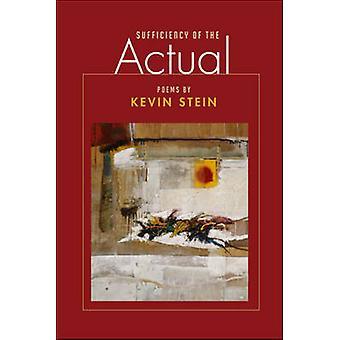 Tillräcklighet för den faktiska av Kevin Stein - 9780252076008 bok