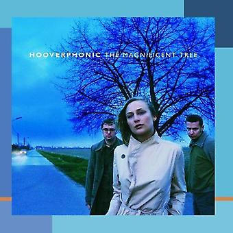Hooverphonic - Magnificent Tree [CD] USA importare