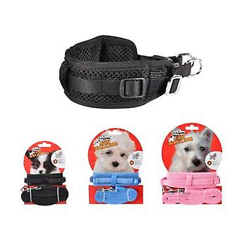 Camon Necklace + Adjustable Strap (Dogs , Walking Accessories , Leads)