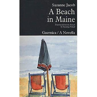 Spiaggia in Maine