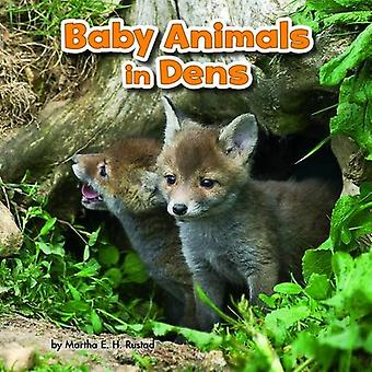 Baby Animals in Dens (Little Pebble: Baby Animals and Their Homes)