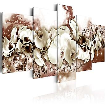 Canvas Print - Chocolate Orchid