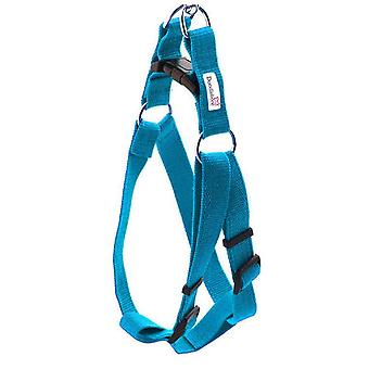 Doodlebone Bold Nylon Harness Cyan Large 25mm X 50-70cm
