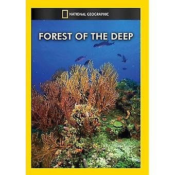 Wald der Deep [DVD] USA importieren