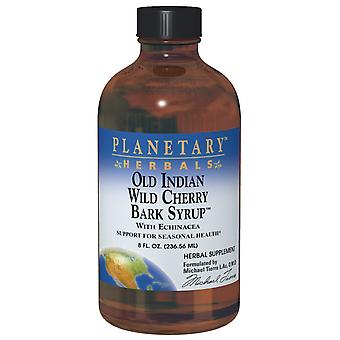 Planetary Herbals Old Indian Wild Cherry Bark Syrup 8 oz