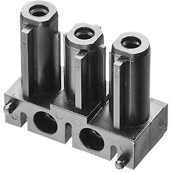 Mains connector AC Series (mains connectors) AC Socket, straight Total number of pins: 2 + PE 16 A Black Adels-Contact AC 166 GBULV/ 3 1 pc(s)