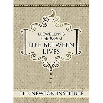 Llewellyn's Little Book of Life Between Lives (Llewellyn's Little Books)