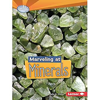 Marveling at Minerals (Searchlight Books Do You Dig Earth Science?)
