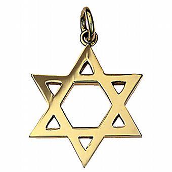 9ct oro llano 23mm colgante estrella de David
