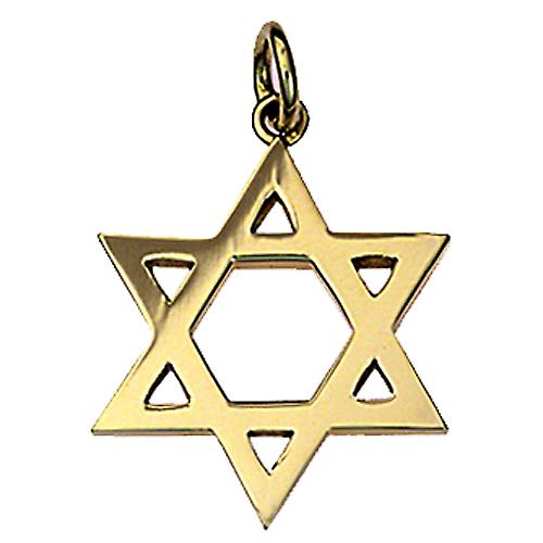 9ct Gold 23mm plain Star of David Pendant