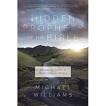 Hidden Prophets of the Bible: Finding the Gospel in Hosea Through Malachi