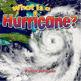 What Is a Hurricane? by Johnson - Robin - 9780778724360 Book