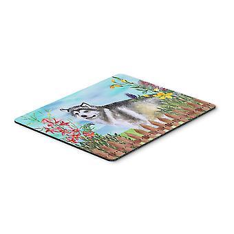 Alaskan Malamute Spring Mouse Pad, Hot Pad or Trivet