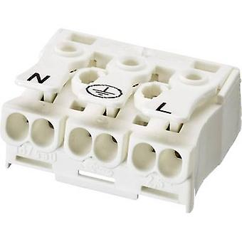Adels-Contact 041013 Lamp terminal flexible: -2.5 mm² rigid: -2.5 mm² Number of pins: 3 1 pc(s) White