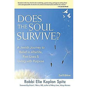 Fait de la survie de l'âme?: un voyage juif à la croyance en l'au-delà, passé la vie & vivant avec but