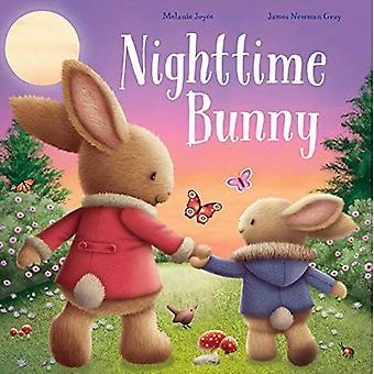 Nighttime Bunny [Board book]