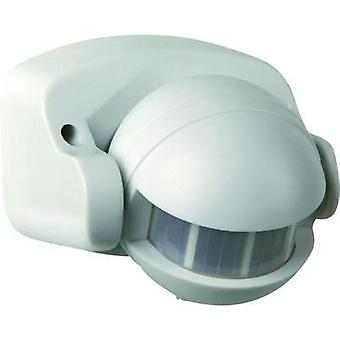 Surface-mount, Wall PIR motion detector GAO 657 180 ° White IP44