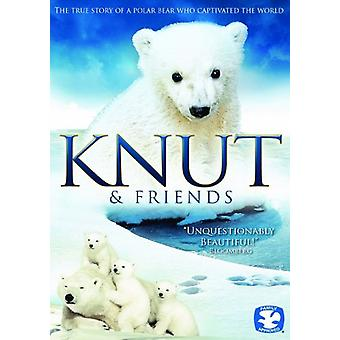 Knut & vänner [DVD] USA import