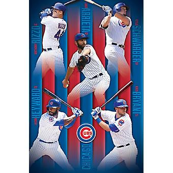 Chicago Cubs - Group 16 Poster Print