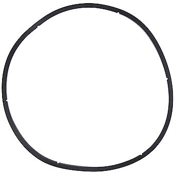 Pentair PacFab 350166 Lid Gasket for EQ Series Commercial Plastic Pump