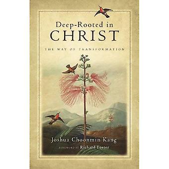 Tief verwurzelt in Christus: der Weg der Transformation